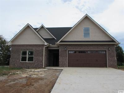 Sevierville Single Family Home For Sale: 1774 Thurman Circle