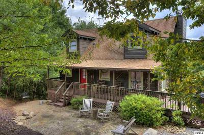 Sevierville Single Family Home For Sale: 2415 N. School House Gap Rd