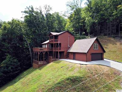 Sevierville Single Family Home For Sale: 3770 Ginseng Way