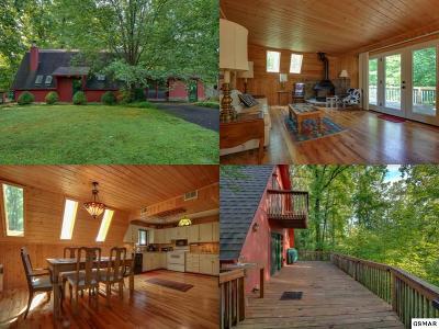 Single Family Home For Sale: 537 Gatlin Drive