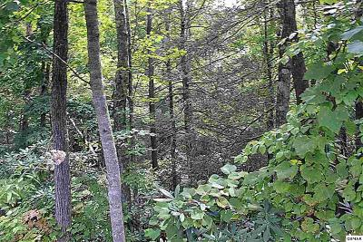 Gatlinburg TN Residential Lots & Land For Sale: $29,900