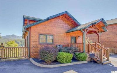 Gatlinburg TN Single Family Home For Sale: $339,900