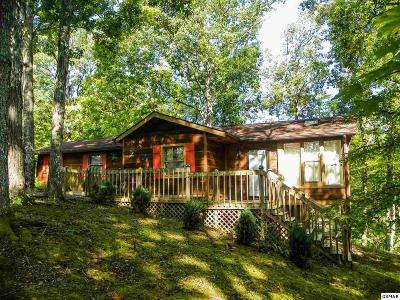Sevierville Single Family Home For Sale: 107 Dream Way