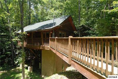 Sevierville Single Family Home For Sale: 2764 Mountain View Cir