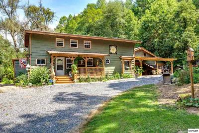 Sevierville Single Family Home For Sale: 4142 Wilhite Rd