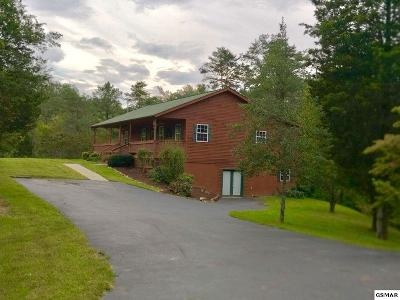 Sevierville Single Family Home For Sale: 1186 Rule Hollow