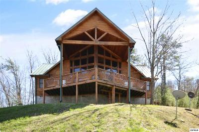 Sevierville Single Family Home For Sale: 3321 Shagbark Hickory Rdg
