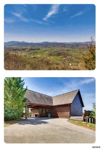 Sevierville Single Family Home For Sale: 3935 Ravens Den Way