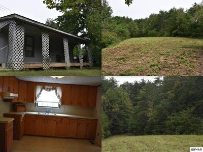 Sevierville Single Family Home For Sale: 1618 Dixon Branch Rd
