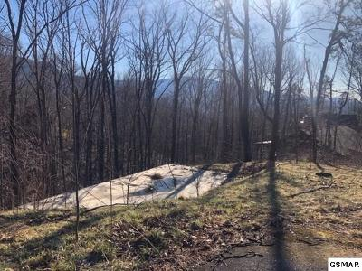 Residential Lots & Land For Sale: 834 Pine Top Lane