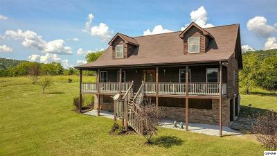 Rutledge Single Family Home For Sale: 5931 Owl Hole Gap Rd