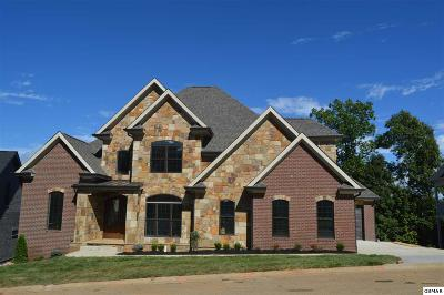 Knoxville Single Family Home For Sale: 1224 Appaloosa Way