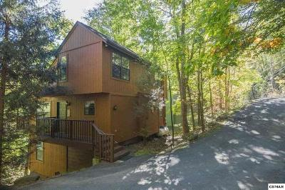 Gatlinburg Single Family Home For Sale: 814 Stans Rd