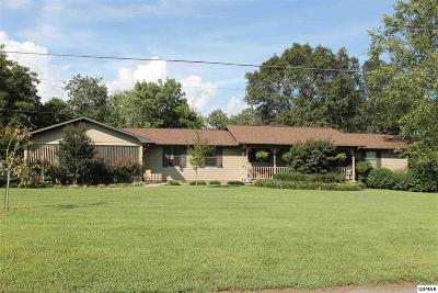 Sevier County Single Family Home For Sale: 1150 Winding Dr