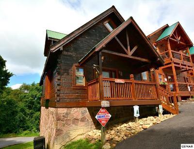 Gatlinburg Single Family Home For Sale: 1251 Bear Cub Way