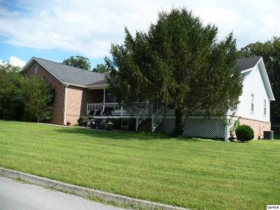 Sevierville Single Family Home For Sale: 3520 Autumn Woods Lane