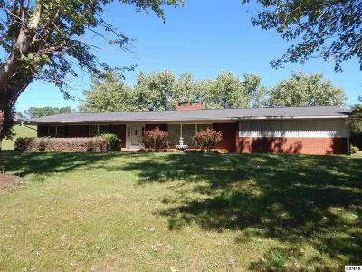 Sevierville Single Family Home For Sale: 4170 Newport Hwy