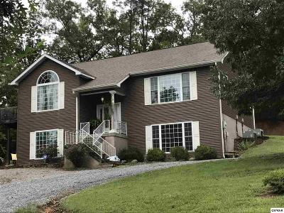 Sevierville Single Family Home For Sale: 850 Sylvia Lane
