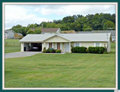 Dandridge Single Family Home For Sale: 363 St. Edward Dr.