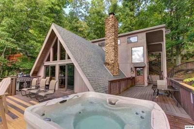 Gatlinburg TN Single Family Home For Sale: $298,800