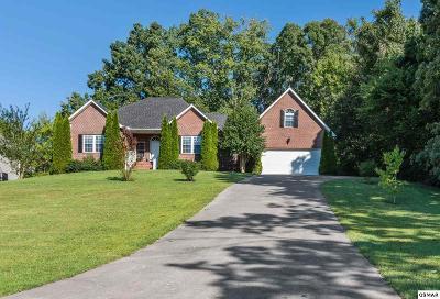 Seymour Single Family Home For Sale: 826 Reagan View Lane