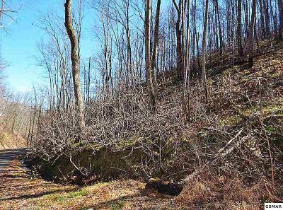 Sevier County Residential Lots & Land For Sale: Lot 545 Deep Hollow Court