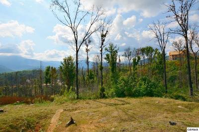 Sevier County Residential Lots & Land For Sale: 814 Chalet Village Boulevard