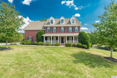Knoxville Single Family Home For Sale: 1680 Botsford Dr