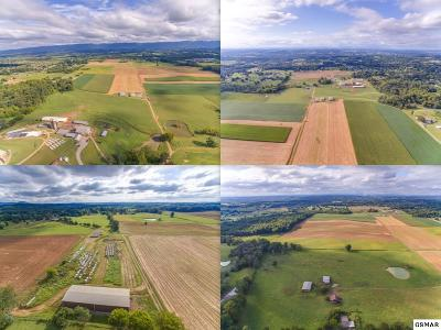 Farm & Ranch For Sale: Old Old Niles Ferry Road