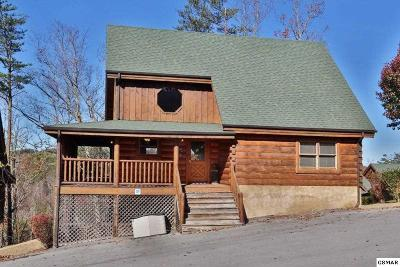 Sevierville Single Family Home For Sale: 1959 Cougar Crossing Way