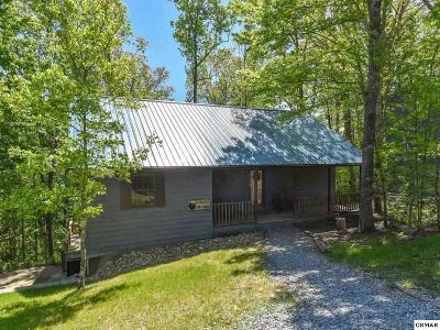 Pigeon Forge Multi Family Home For Sale: 638 Oaks View Ct A & B