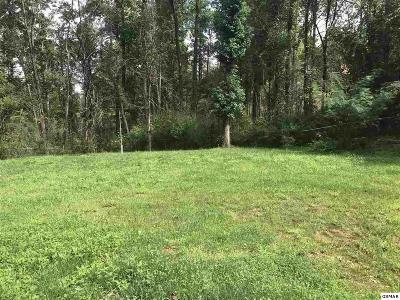 Sevier County Residential Lots & Land For Sale: 462 Hilltop Rd