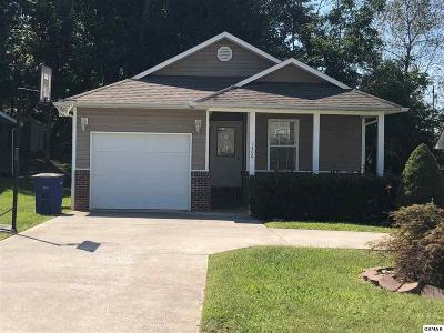 Sevier County Single Family Home For Sale: 1340 William Holt Blvd