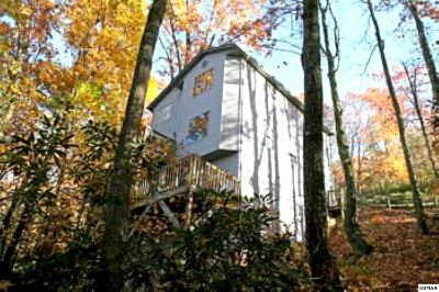 Gatlinburg TN Single Family Home For Sale: $310,500