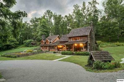 Gatlinburg TN Single Family Home For Sale: $1,200,000