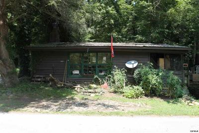 Townsend Single Family Home For Sale: 6923 Old Walland Hwy