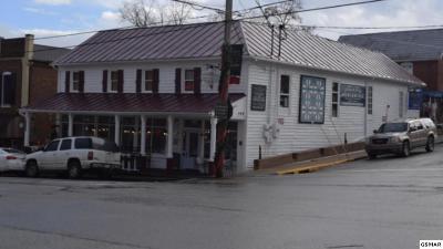 Dandridge Commercial For Sale: 149 E Main Street