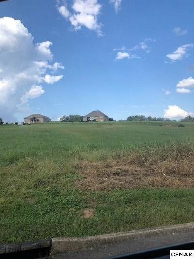 Residential Lots & Land For Sale: 9607 Gunnies Drive