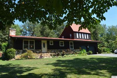 Sevierville Single Family Home For Sale: 1135 Denton Rd