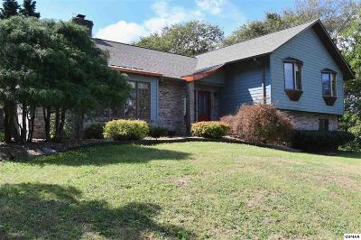 Sevierville Single Family Home For Sale: 1020 Pullen Rd.