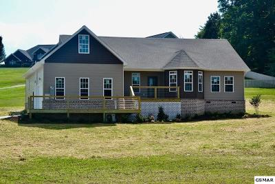 Sevierville Single Family Home For Sale: 608 Bryce View Ln