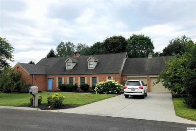 Sevierville Single Family Home For Sale: 1210 Briar Lea