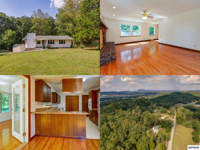 Knoxville Single Family Home For Sale: 501 Bagwell Road