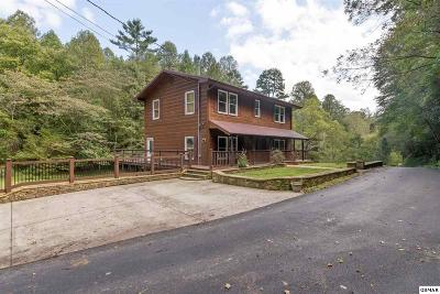 Gatlinburg Single Family Home For Sale: 346 Autumn Lane
