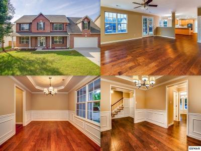 Knoxville Single Family Home For Sale: 9916 Misty Grove Lane
