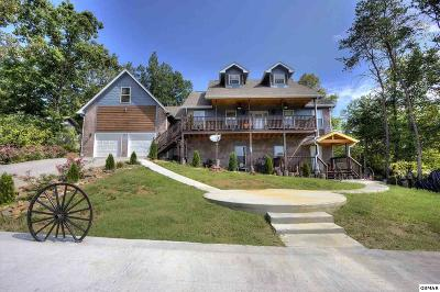 Sevierville Single Family Home For Sale: 1305 Ownby Cir