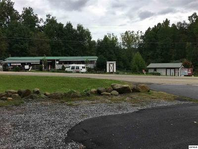 Cocke County Commercial For Sale: 5043 Hooper Hwy.