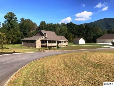 Sevierville Single Family Home For Sale: 3544 Deer Field Circle