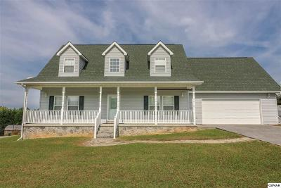 Sevierville Single Family Home For Sale: 2814 English Valley Ln