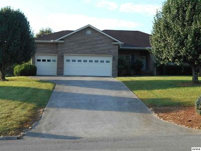 Sevierville Single Family Home For Sale: 2004 James Rd
